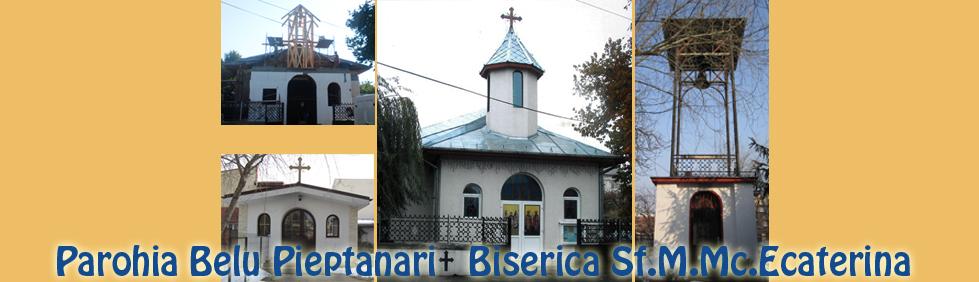 Biserica Sfanta Ecaterina istoric